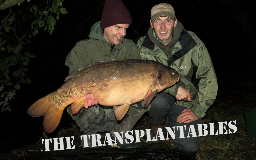 The Transplantables, karpervissen met Boudewijn en Robbe