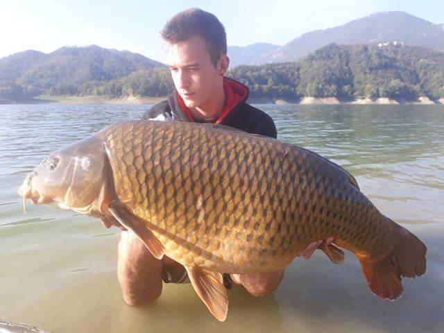 Een geweldige vis ingestuurd door Lorenzo Rossi.